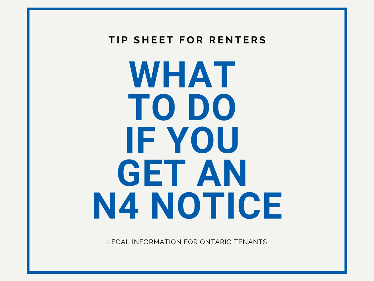 What to do if you get an N4 notice